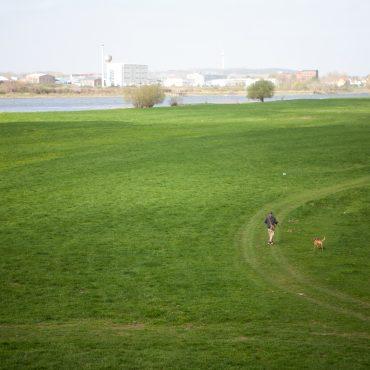 Das Foto zeigt eine Stadtkulisse im Hintergrund, im Vordergrund eine grüne Wiese auf der ein einzelner Mensch spazierengeht. Der Himmel ist blaugrau.