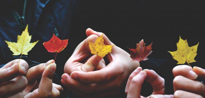 Viele Hände halten jeweils ein Blatt in unterschiedlichen Herbstfarben